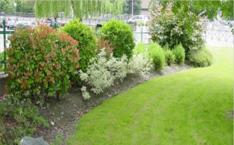 Giardinaggio 4